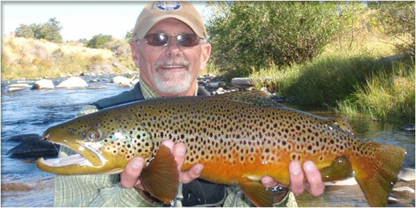 Fly fishing in northern nevada at the truckee river for Truckee fishing report